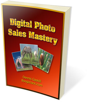 Sell Digital Photos Online
